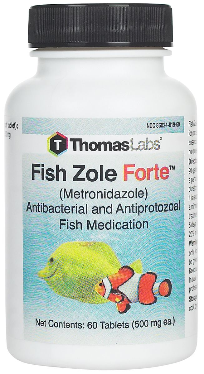 Fish Zole Forte Fish Antibiotic - 100 ct | Products | Fish