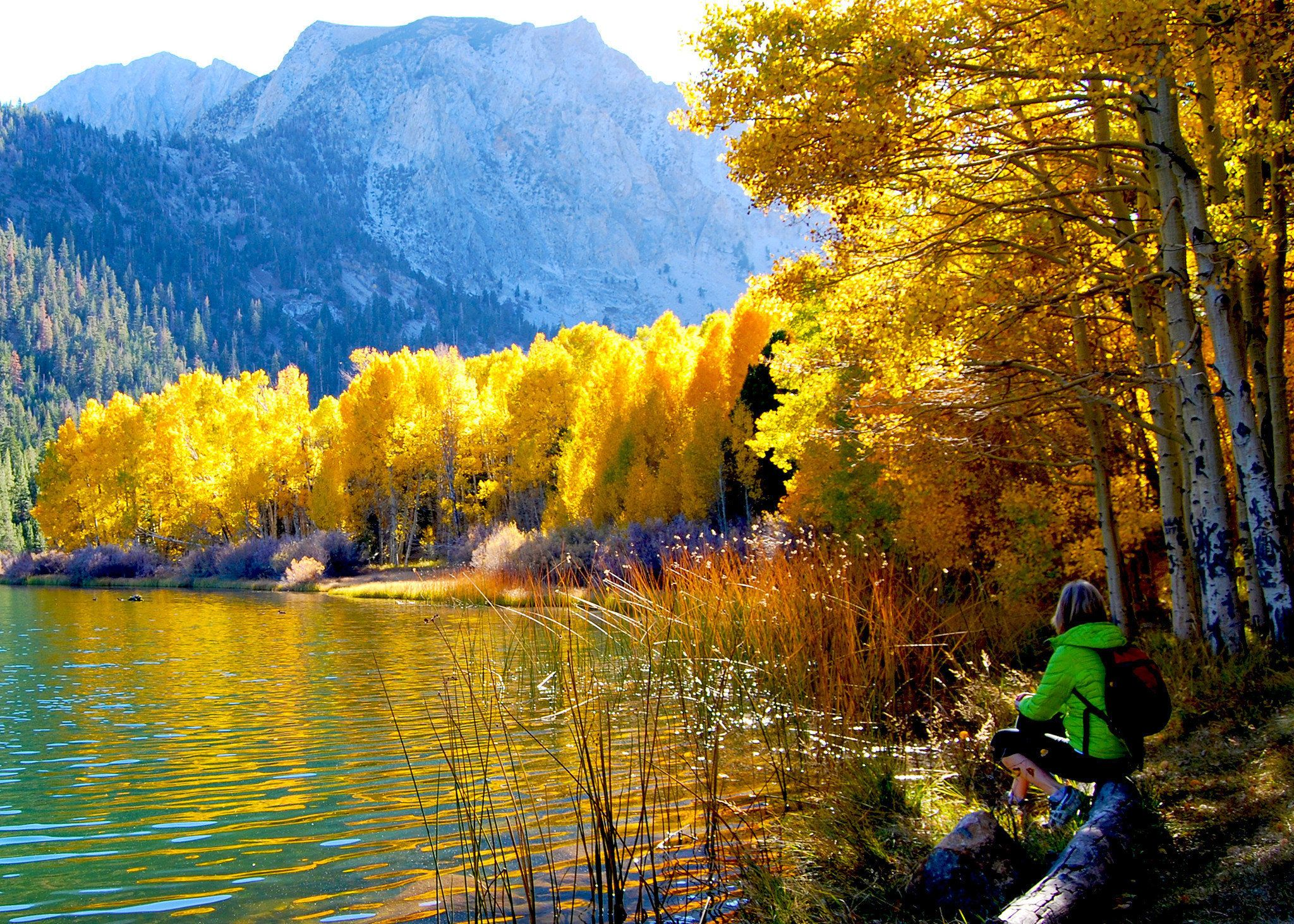 California Plumas County claims fall color crown this