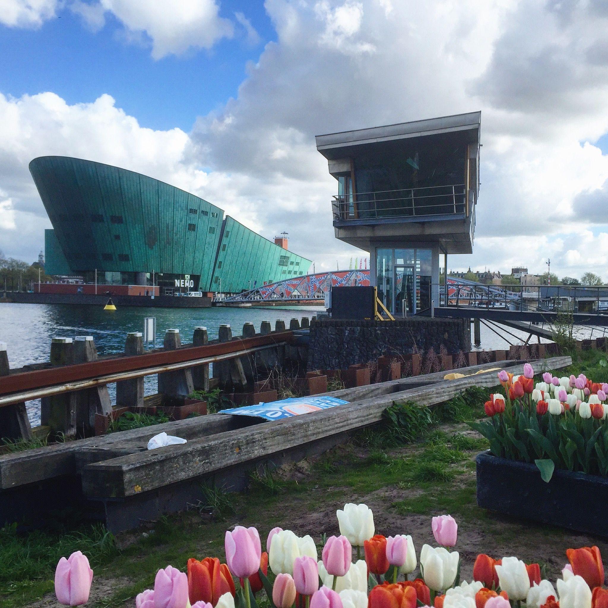 Amsterdam, Nemo