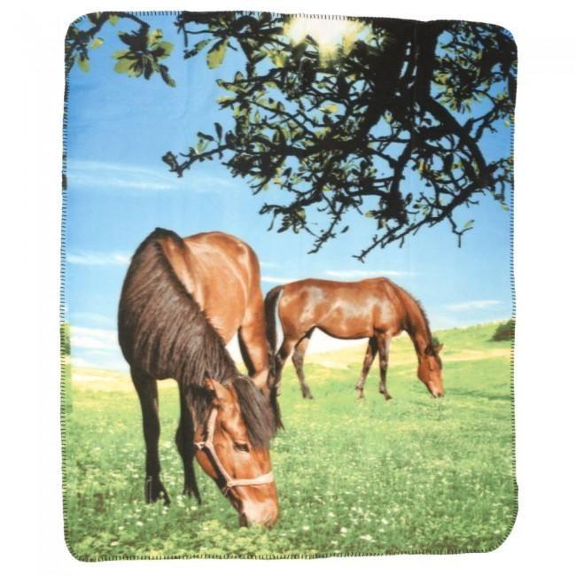2 Horses/Pasture Blanket