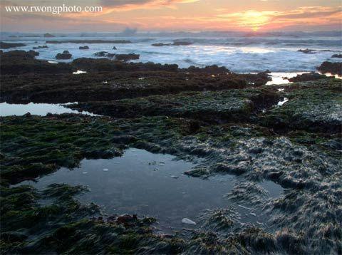 Minus Tide At James Fitzgerald Marine Reserve Moss Beach California Http Www Rwongphoto Com Sf Bay Area California Travel Road Trips Moss Beach