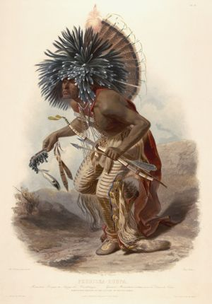"""black american history books collection   Moenntarri Warrior in the costume of the dog danse"""". Wied, Maximilian ..."""