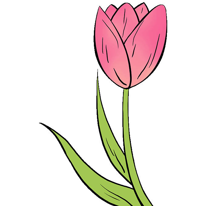 How to Draw a Tulip \u2013 Really Easy Drawing Tutorial