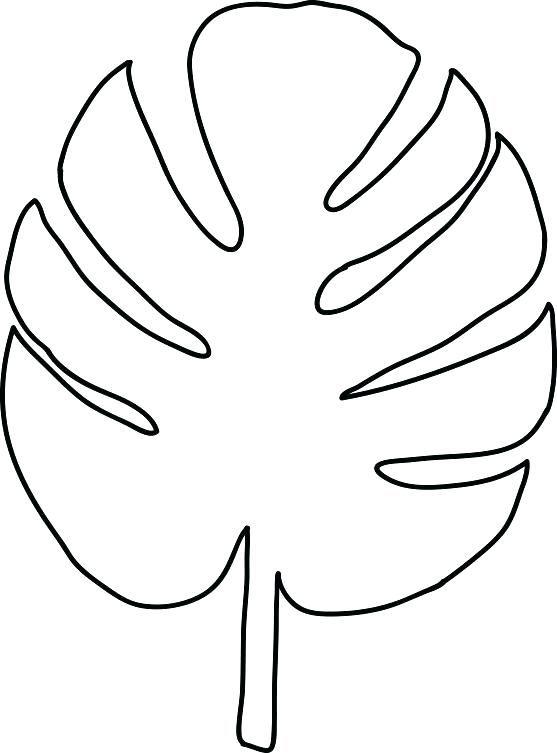 leaf stencils printable leaf maple leaf template free