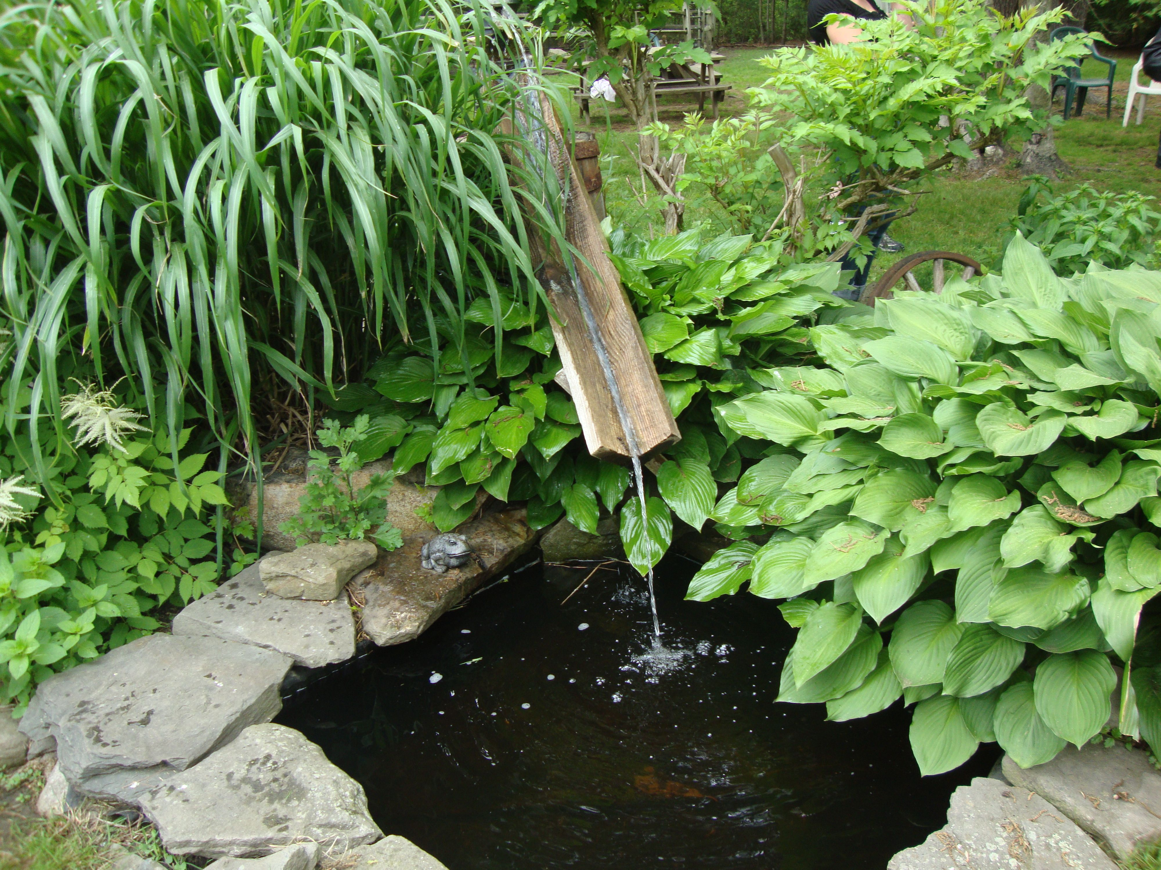 duck pond ideas curb appeal pinterest duck pond garden