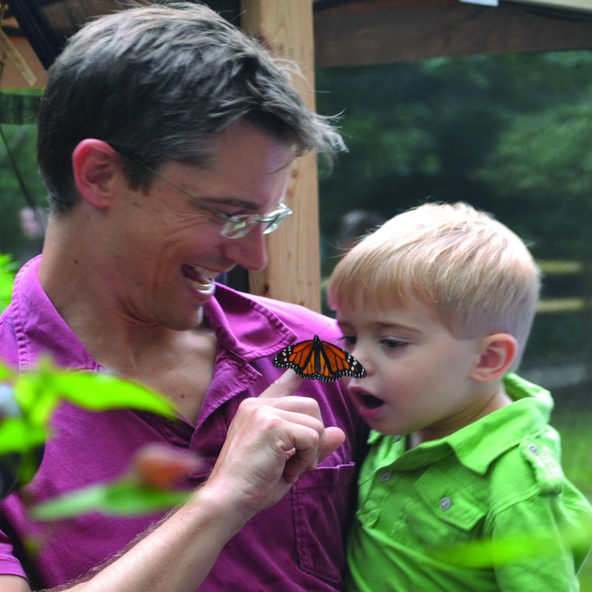 The Butterfly Encounter WalkThrough Exhibit in Roswell