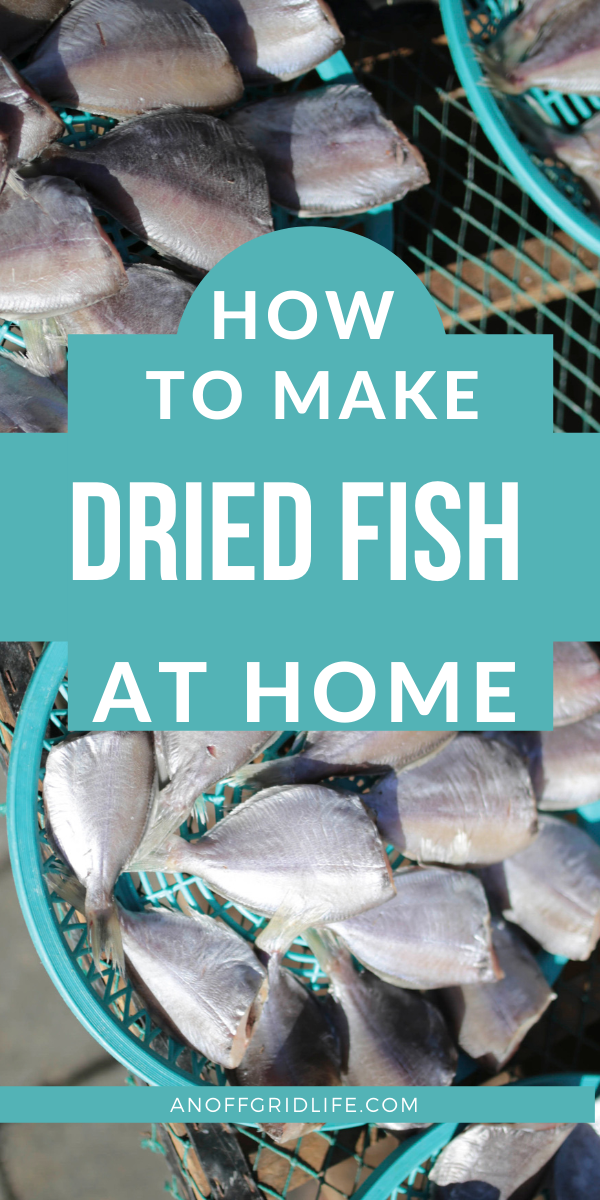 How to Make Dried Fish | An Off Grid Life in 2020 ...