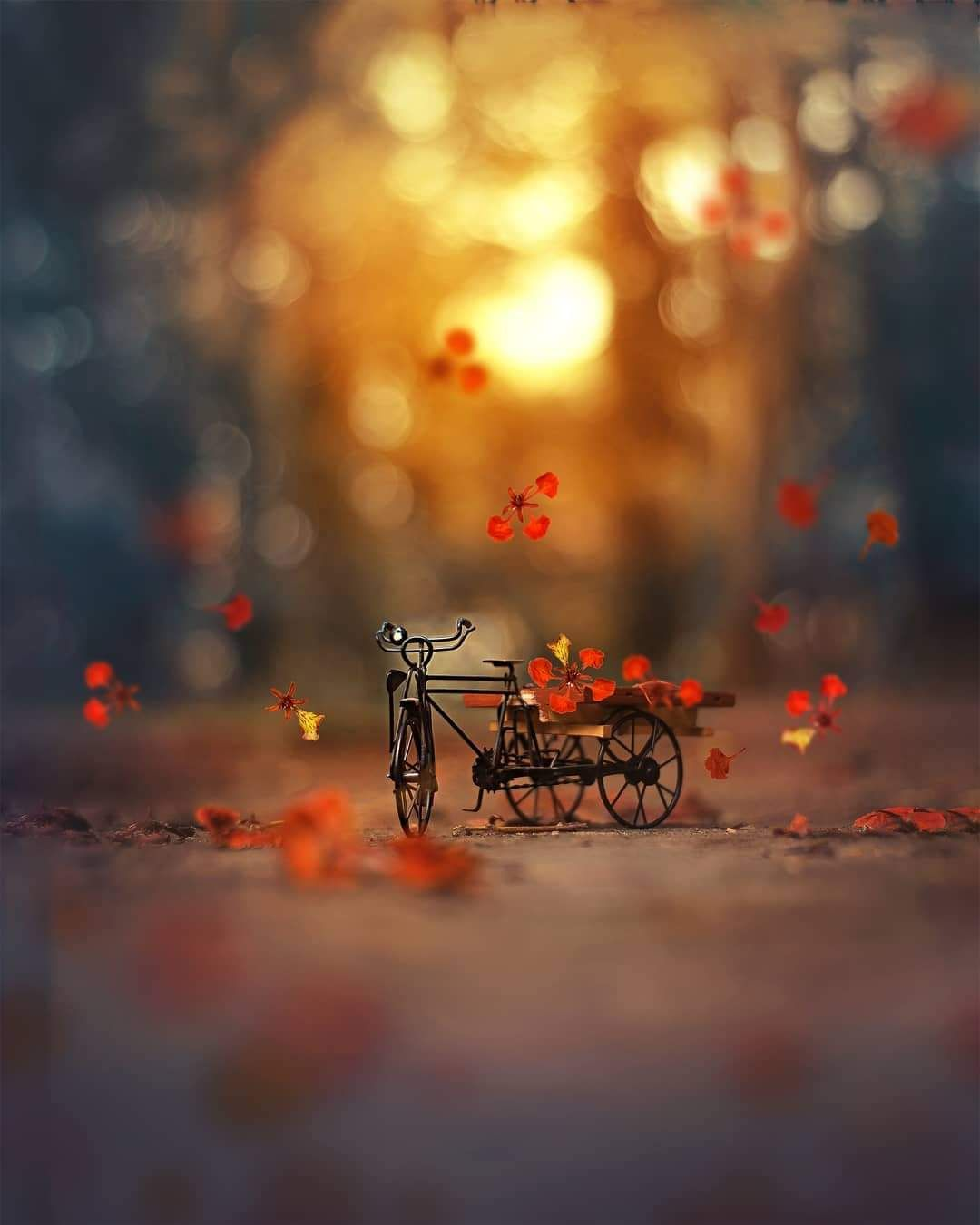 Ale On Twitter In 2021 Miniature Photography Cool Pictures For Wallpaper Beautiful Nature Wallpaper
