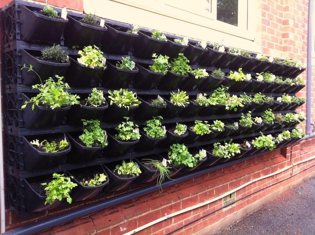 DIY Planting Vertical Small Garden Design Ideas For Better Home Gardening
