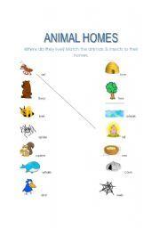 animal habitats printables animal homes nature detectives pinterest animal habitats. Black Bedroom Furniture Sets. Home Design Ideas