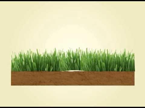 PG - Installing Artificial Grass - Infill