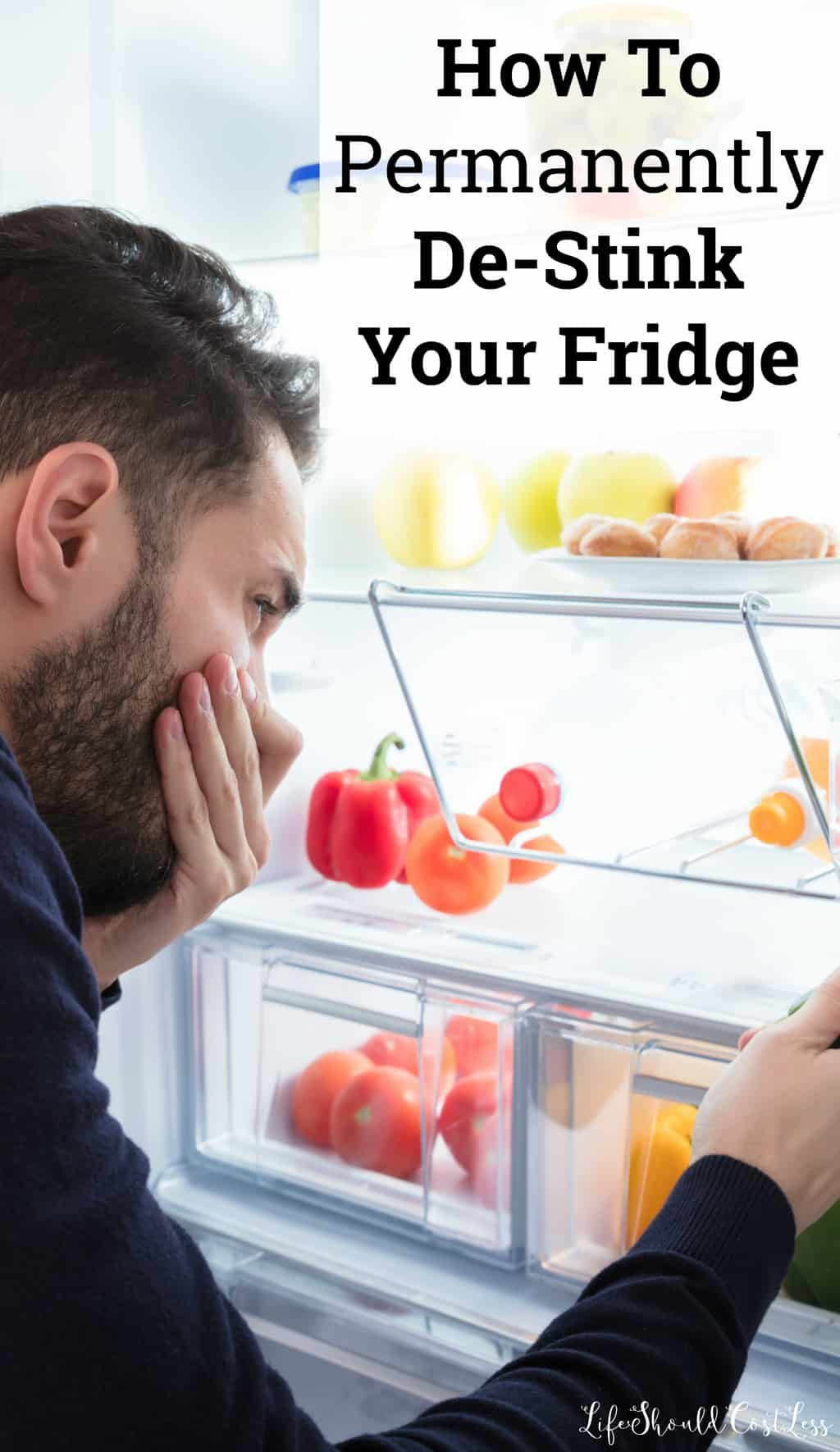 How to permanently destink your fridge life should cost