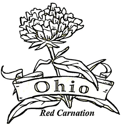 State Of Ohio Coloring Page Paper In 2019 Flower Coloring