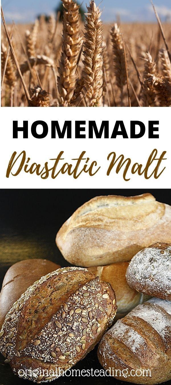 Homemade Diastatic Malt: Learn How to Make Malt for Better ...
