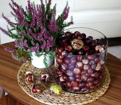 Heidekraut Pflanze und Vase mit Kastanien #kastanienbastelnkinder
