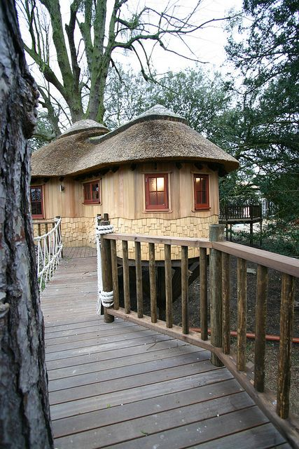 tree houses for adults | Recent Photos The Commons Getty Collection Galleries World Map App ...