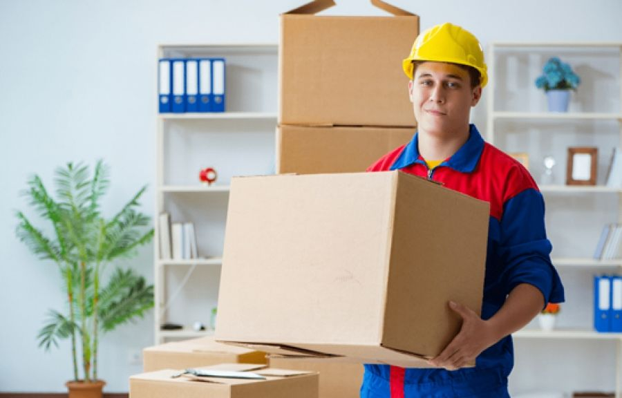 Orange Square Movers Packers And Movers Office Movers Movers