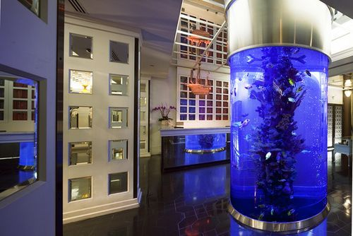 Dream Hotel Midtown Is Pet Friendly Dream Hotels Dream Hotel New York Nyc Boutique Hotels