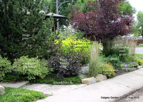 A Low Maintenance Front Yard Garden In Calgary Landscaping Calgary Front Yard Garden Design Front Garden Design