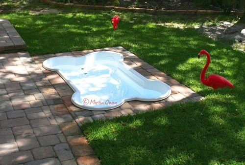 Create A Built In Dog Pool Just In Time For Summer Offbeat Home Life Dog Pool Dog Bone Pool Dog Yard