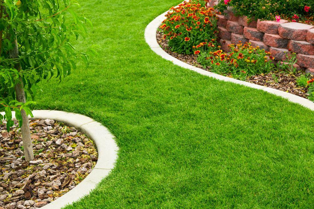 Rasenkanten Setzen So Einfach Geht Es Ratgeber Haus Garten Garten Ideen Garten Garten Landschaftsbau