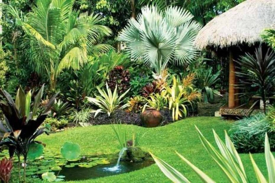 Tropical Garden Designs With Tiki Hut And Pond Exotic Lawn