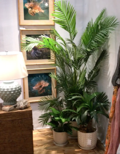 Ingenious Indoor Plant Decor Ideas with Tips » Eng