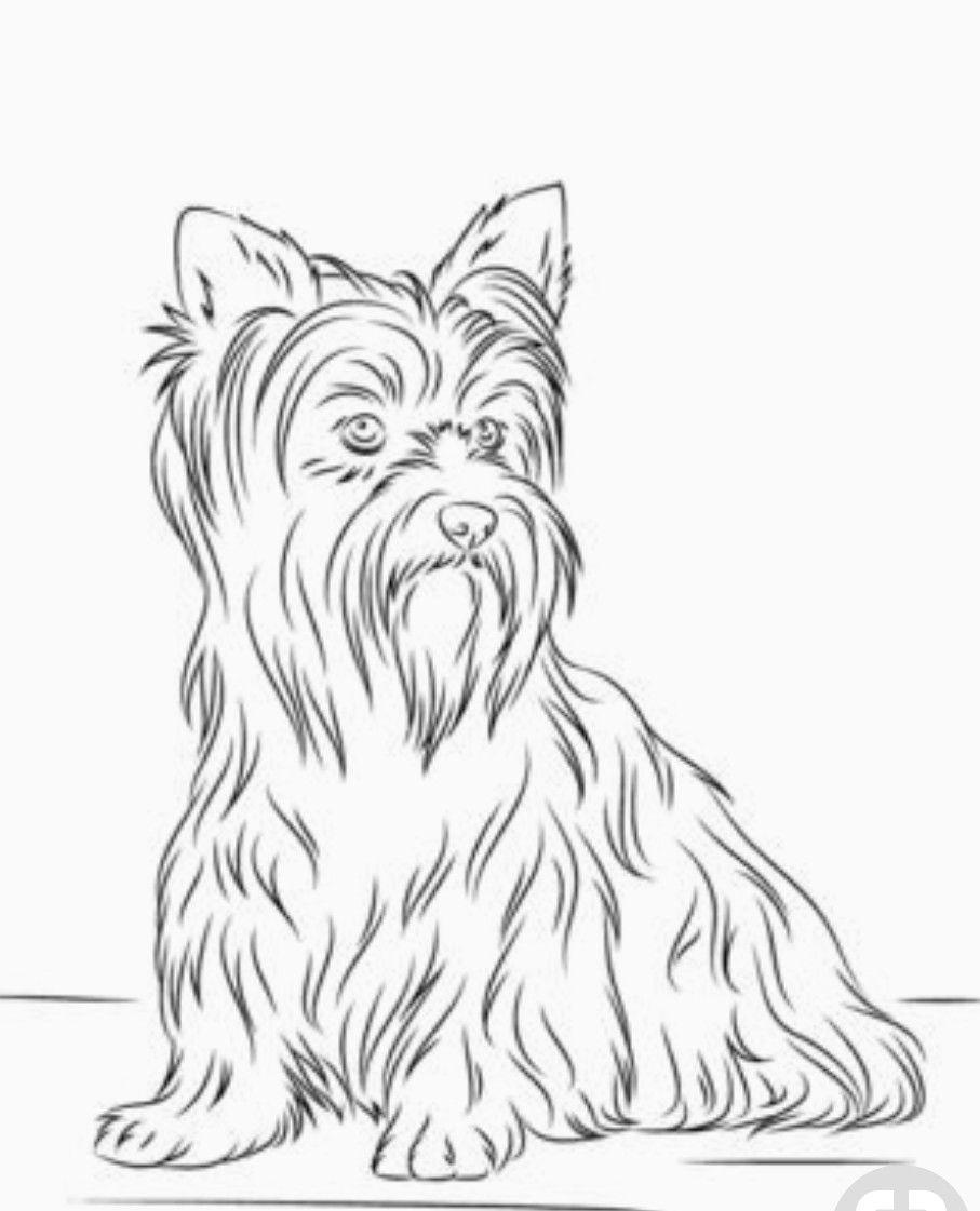 Pin By Dominika Wrube On Nana Dog Coloring Page Puppy Coloring Pages Animal Coloring Pages