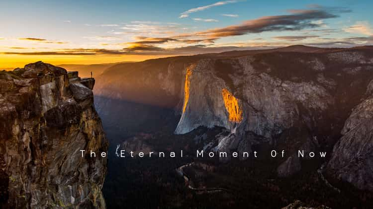 The eternal moment of now nature movies in this moment