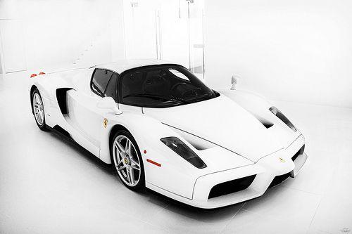 The White Room Ferrari Enzo Ferrari Hot Cars