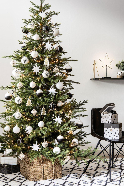 Quel Sapin De Noel Choisir Deco Noel Maison Idee Deco Noel
