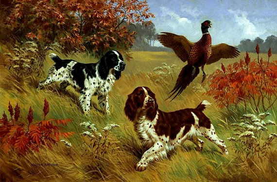 """8x10 $15.00 ENGLISH SPRINGER SPANIEL 2 Colors Hunting on One 16 inch Fabric Panel to Sew.Actual Picture is 8"""" x 11""""."""