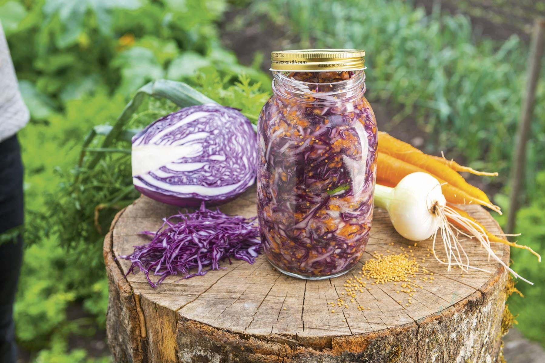 que son verduras fermentadas