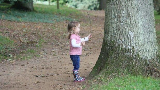 Winkworth Arboretum, Surrey http://www.podcastdove.com/2013/10/10/winkwortharboretum/