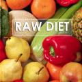 Paul Nison Raw Website Raw Food Recipes Raw Diet Food