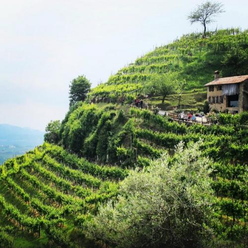Kateoplis Countryside Places To Visit Tourism
