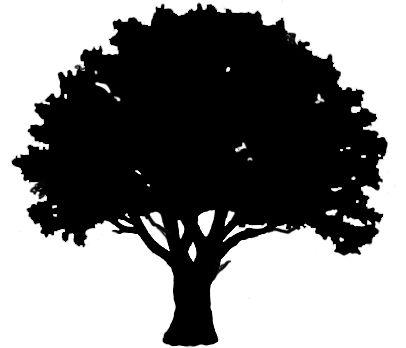 oak tree silhouette graphics a world of beauty pinterest tree rh pinterest com oak tree vector black oak tree vector black