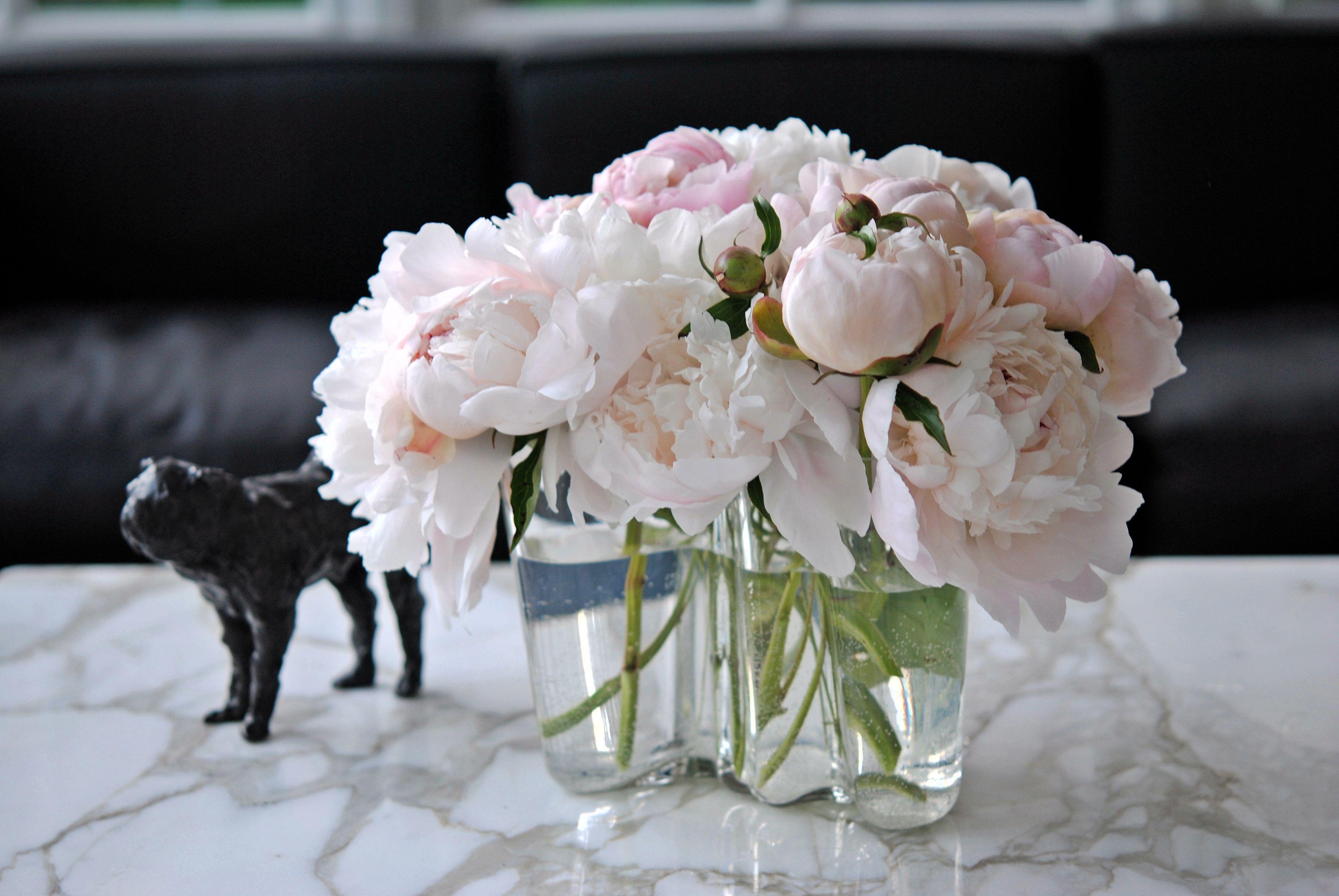 Aalto Vase With Peonies Www Convallaria Com Flower Vases Peony Arrangement Flower Arrangements