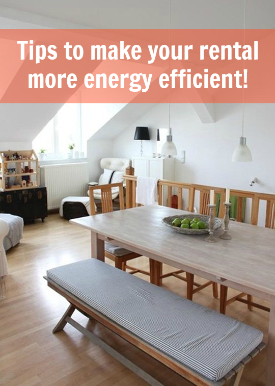 The Ultimate Guide to Making Any Rental More Energy ...