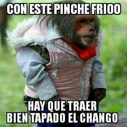 Pin By Ulises Rojas On Memes Mexican Funny Memes Funny Spanish Memes Funny Picture Quotes