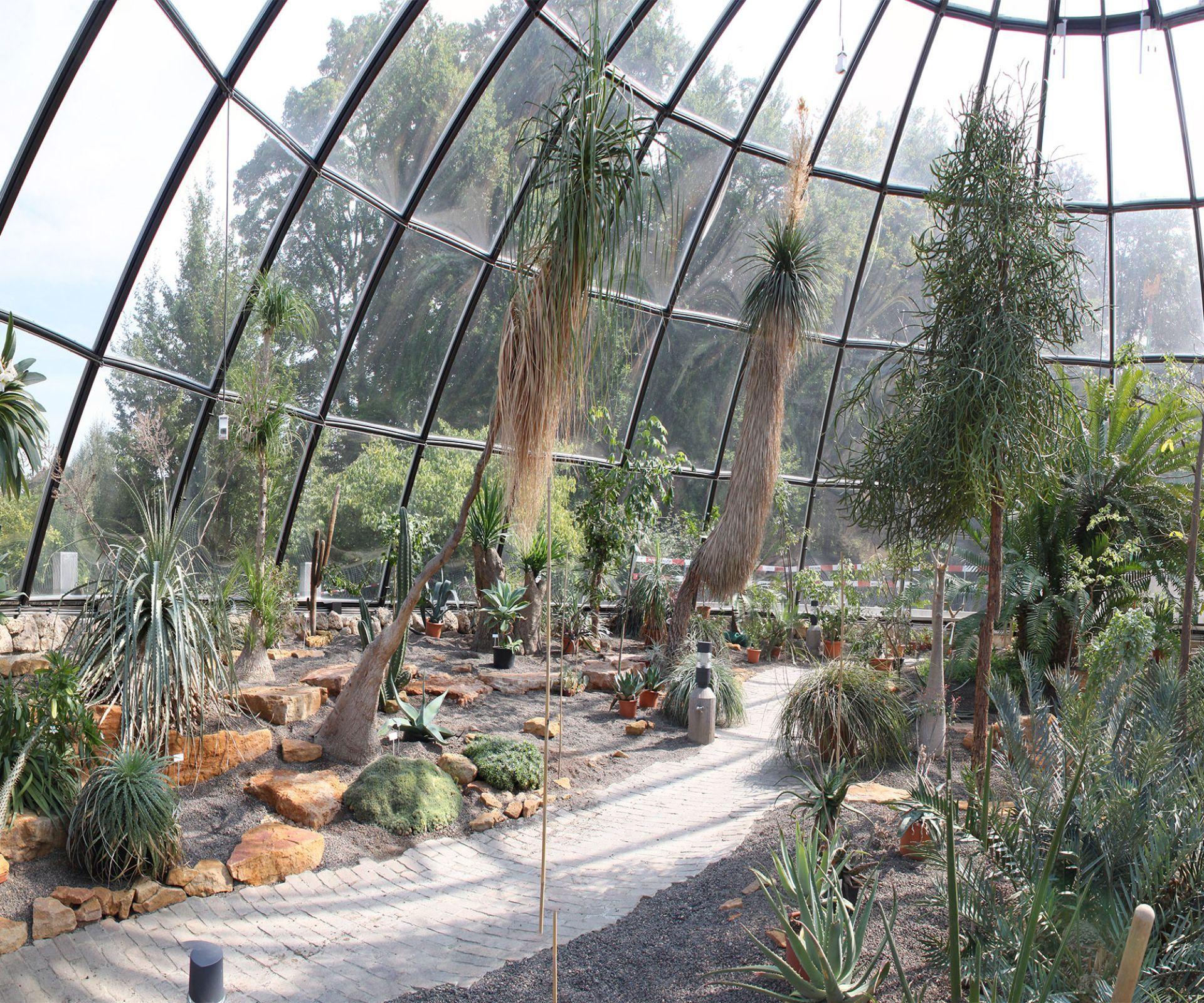 Botanische Garten Der Universitat Zurich Familien Ausflug Ideen Mit Kindern Auch In Den Ferien Kanton Zurich Cupulas Ladrillo
