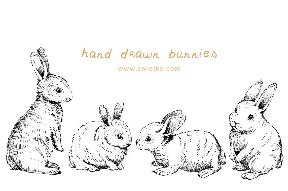 Easter Bunnies Doodle Clipart By Swiejko On