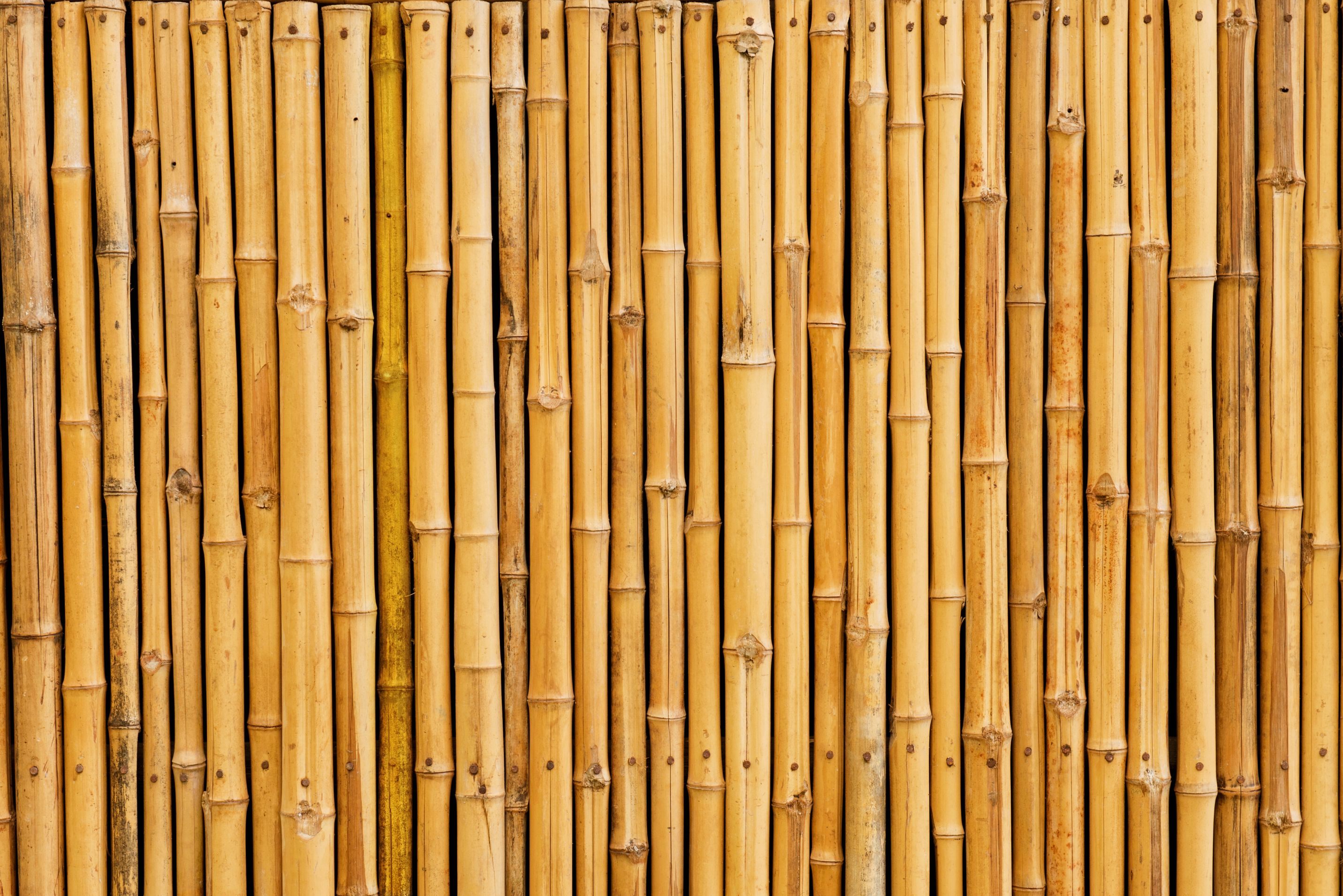 Multi Use Bamboo Surface Protector Bamboo Fence Wooden Fence