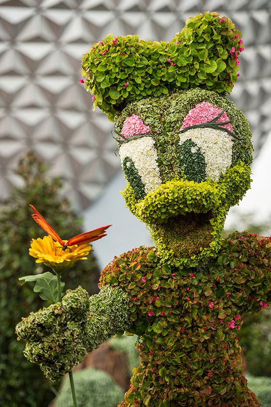 Epcot Flower and Garden 2015 is almost starting!!! I want to go!!!!