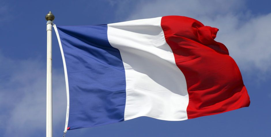 Victory Update Court Orders France Must Honor Its International Legal Obligations And Protect Vincent Lambert American Center For Law And Justice France Flag French Flag Flag