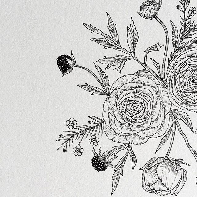 79f055449364b ranunculus details ✨ Camera Tattoos, Ranunculus Flowers, Flower Doodles,  Cover Tattoo, Tattoo