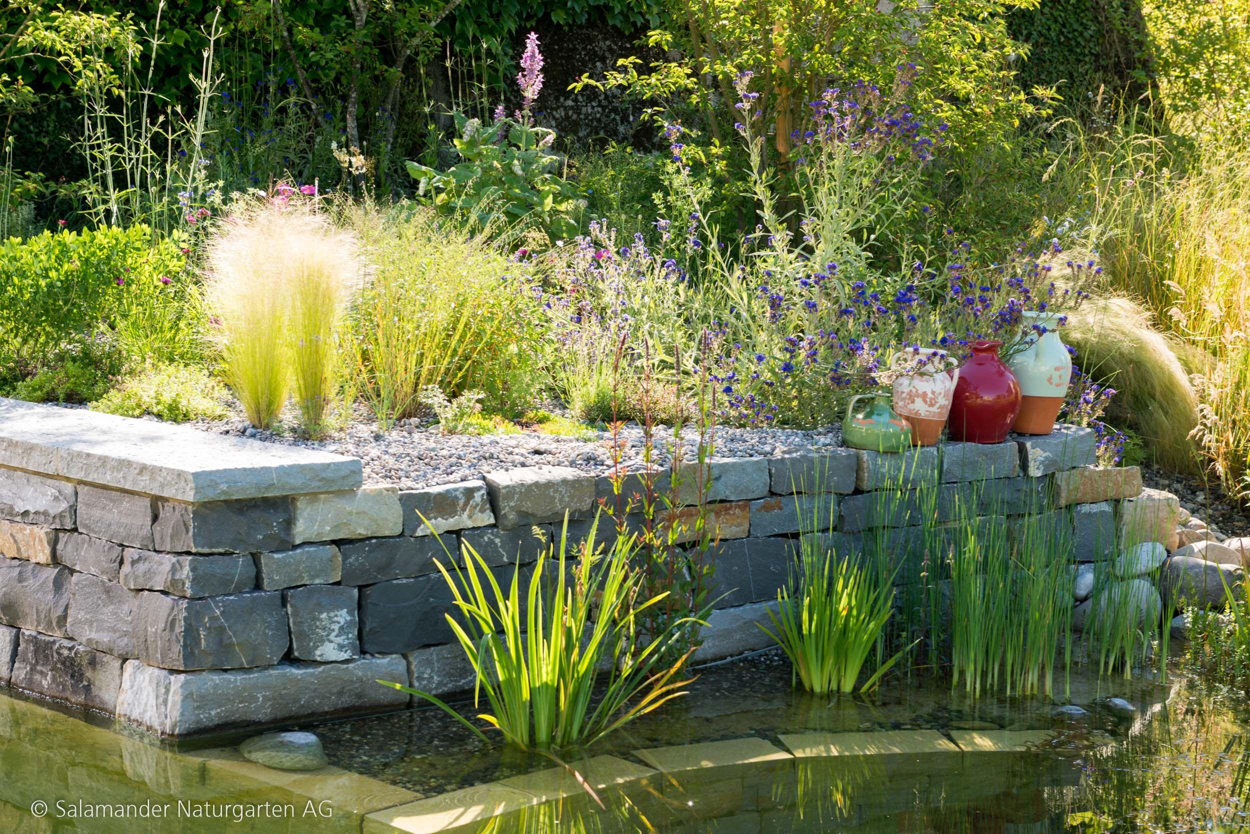 Naturpool Pflege Und Unterhalt Salamander Naturgarten Ag Wasserspiel Garten Naturschwimmteich Schwimmteich