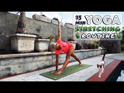 15 minute yoga routine  easy stretches to relax  de