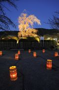 Kyoto Higashiyama Hanatouro 2012, an event that marks the coming of spring in Kyoto, will be held between March 10-20