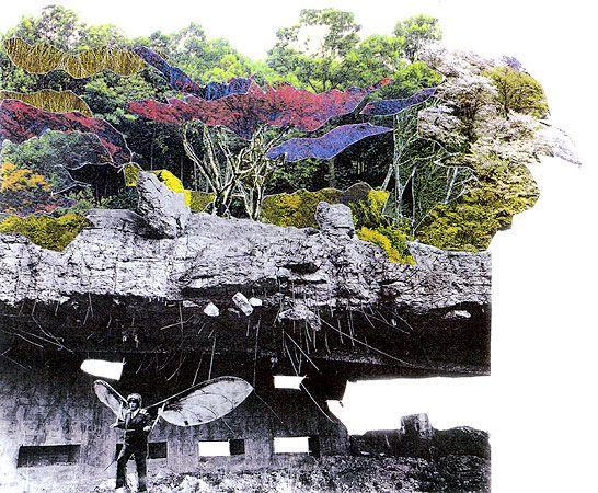 gilles cl ment un jardinier majeur le monde bouge. Black Bedroom Furniture Sets. Home Design Ideas